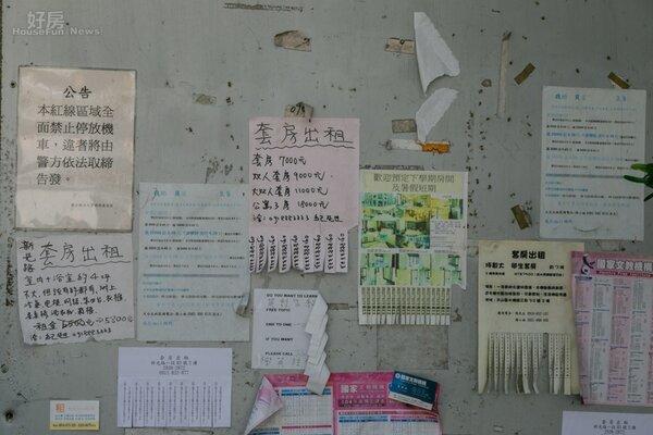 政治大學外租屋廣告。(好房網記者張聖奕/攝影)
