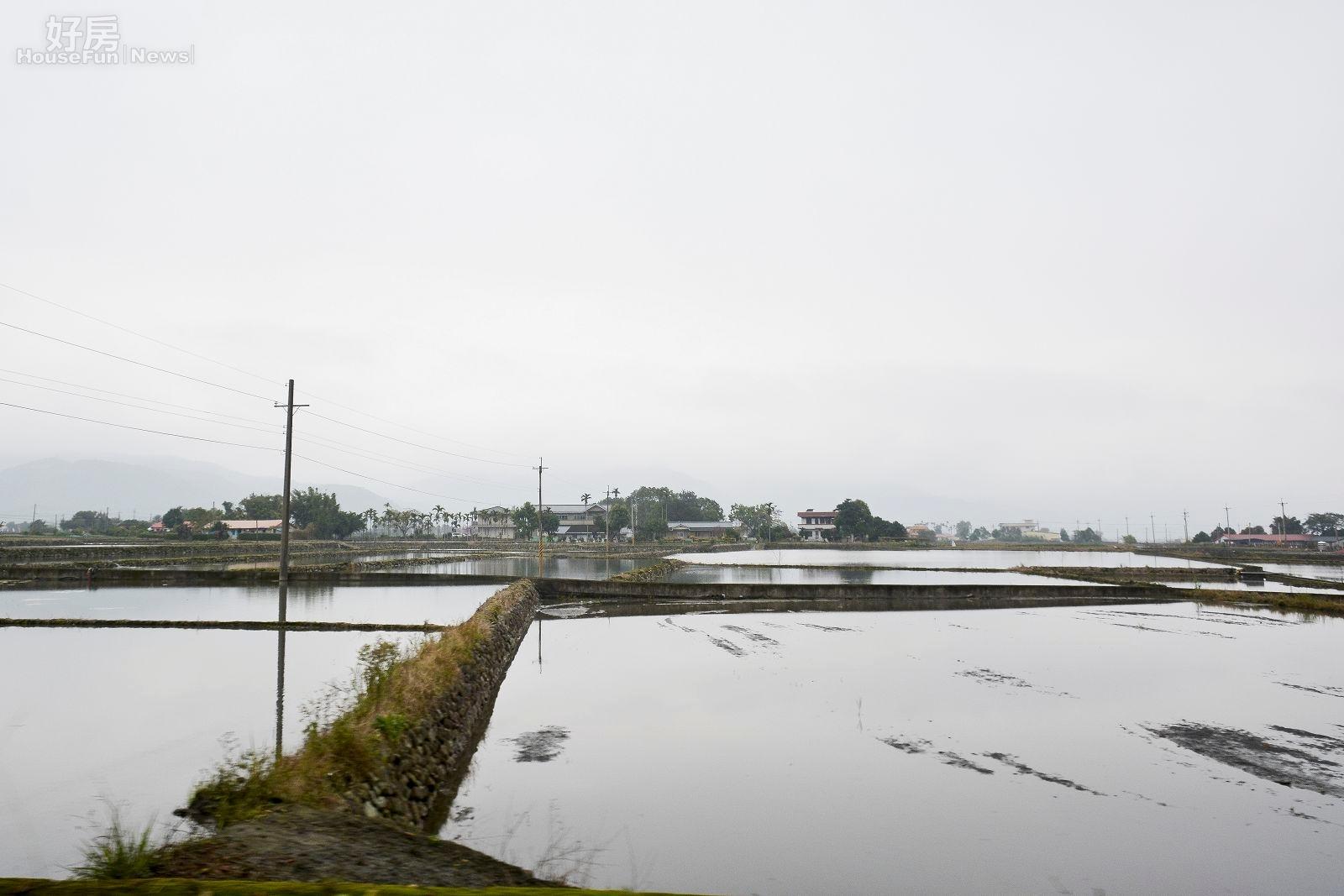 台灣過去以農立國,許多縣市仍有許多稻田產米,供國內人民使用。(好房網News記者 陳韋帆/攝影)