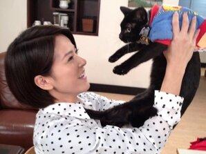 蘇晏霈與貓咪同居汐止大套房