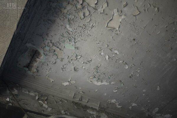 漏水壁癌是常見的老屋瑕疵。(好房網News記者賈蓉/攝影)