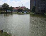東華大學創新研究園區 正式啟動
