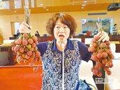荔枝賣相不佳 李麗華要求市府收購