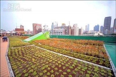 高雄市近年積極推動綠屋頂等減碳計畫。(高雄市工務局提供)