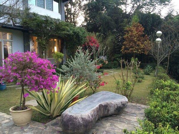 3.庭院造景和百卉由楊淑惠精心栽植。