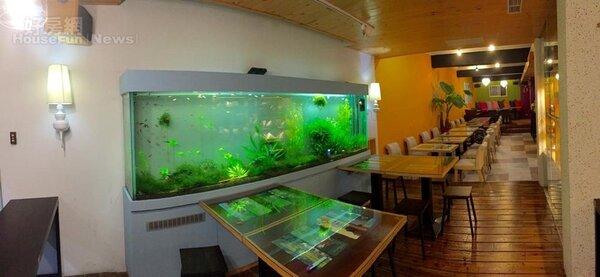 5.水草魚缸不只是美化環境,也代表財庫。