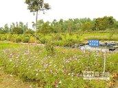 嘉電改造荒地 變身生態園區