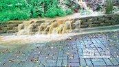 百年嘉義公園 遇雨如沙流