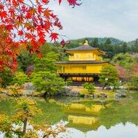 這!就是京都的秋
