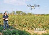 無人機啟動 幫金門農友施肥