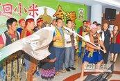 鼓勵青農創業 南迴小米計畫啟動