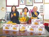量少質升 今年茂谷柑好吃