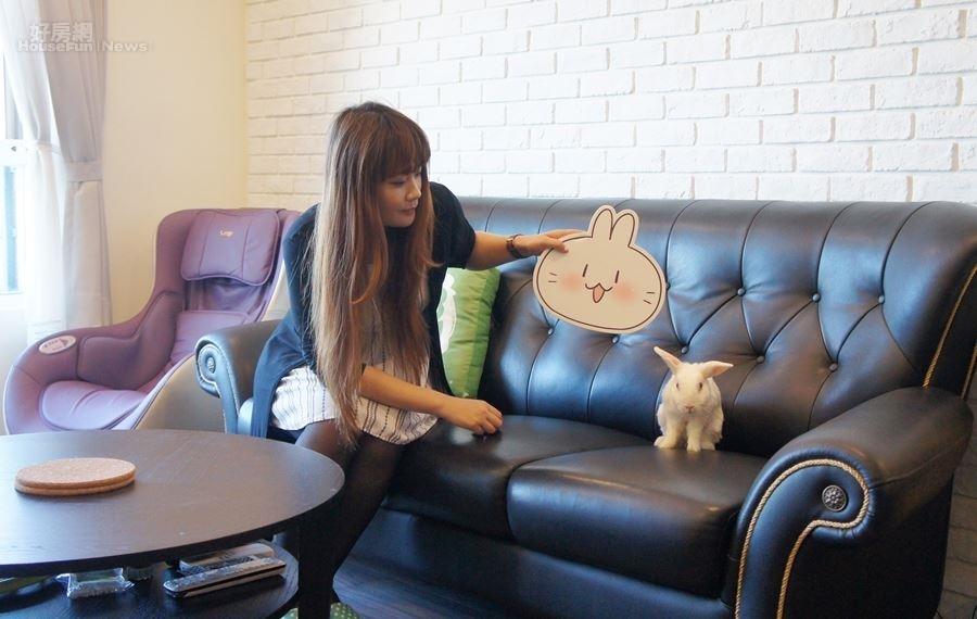 5.愛兔成癡的不死兔,家裡四處可見到兔子相關擺飾,當然也包括她養的兩隻兔子。