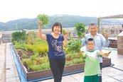 綠屋頂結盟校園 剩菜變生菜