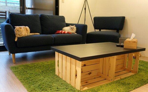 3.玉兔家整體走簡約風,客廳裡像是文化石牆、草坪地毯、木箱客廳桌…等傢具都很有特色。