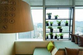 靠窗處的盆栽除了可欣賞調劑身心功能外,也可淨化空氣。