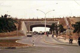 這是圓山隧道往士林方向的角度(攝於1970年),旁邊是現在草木扶疏的圓山公園。