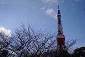 日本首都圈公寓 去年銷量大減