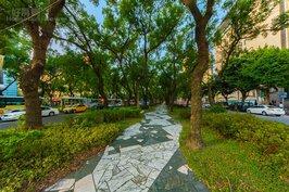 敦化南路林蔭道一景。