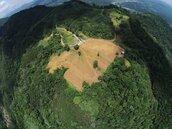 周賺12萬…森林變露營地 每坪成本竟不到千元
