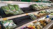 搶賺颱風財 量販超市備貨增3成