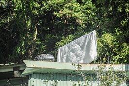 濕濕冷冷的天氣持續好幾天,台北終於盼到太陽露臉。婆婆媽媽趕緊將被褥床單衣服洗起來,讓陽光撒上一身的溫暖。