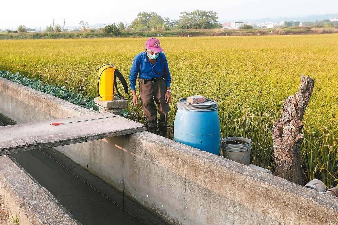 為了解決產業缺水,農委會將鼓勵農民不種稻米、改種雜糧,以節省用水。 記者黃仲裕/攝影