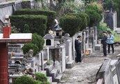 清明掃墓小心感染「恙蟲病」 死亡率可達60%