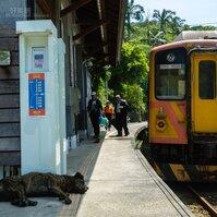 時間停止的車站 平溪線嶺腳站
