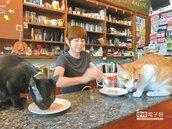 流浪貓變人氣貓 咖啡店活招牌