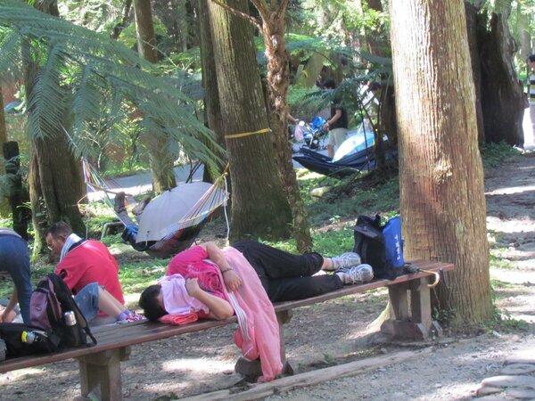 「橫躺族」在長凳上睡午覺,苦了沒有歇腳地方的遊客。 圖/聯合報系資料照片