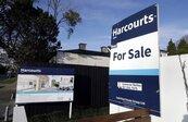 影/紐西蘭打房出大招 外國人一律不得購屋