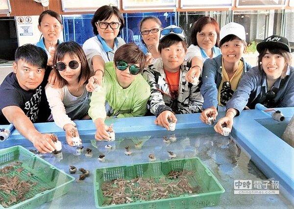 勞動部高屏澎東分署多元就業開發方案推出海底造林計畫,打造澎湖鎖港傳統漁村轉型珊瑚復育村,行銷種植珊瑚體驗觀光活動,如今已成功復育800多株珊瑚,注入海洋新生命。(陳可文攝)