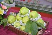 從皮到種子均富含營養 減重吃這種水果最好