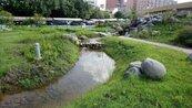 麗池園林明啟用 將成觀光亮點