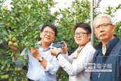 魏應充賣檸檬 創造5贏新農業模式