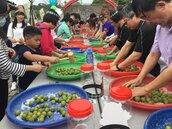 南投梅子節上國道 500位民眾休息站體驗製梅DIY
