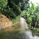 連日大雨 台中大坑一號登山步道預計今年12月搶修完成