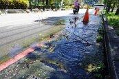 谷關街道湧泉 水淹路面1周無解