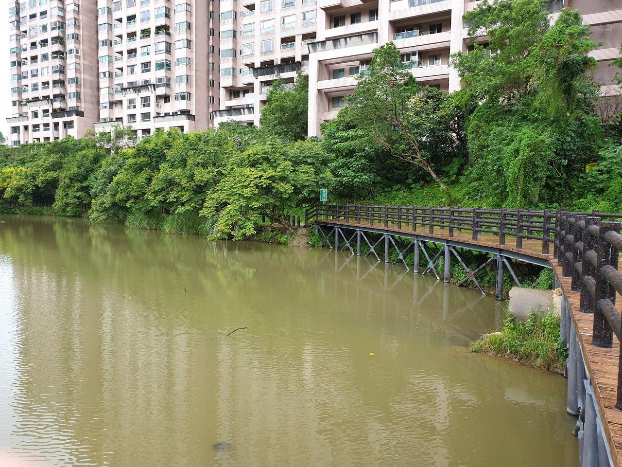 汐止水蓮山莊因汙水管線破損導致廢棄汙水流入金龍湖,造成環境惡臭、湖水遭到汙染。記者胡瑞玲/攝影