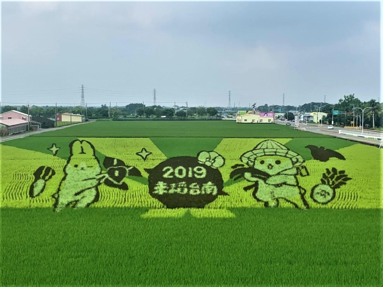台南六甲稻田彩繪「ㄇㄚˊ幾兔」採用3D圖,從高處往下看相當清楚及療癒。圖/記者吳淑玲攝影