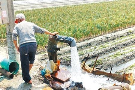 雲林縣從農人口多但勞動力不足,雲林縣今年僅獲准97名農業移工。(周麗蘭攝)