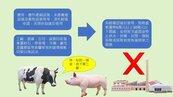 台南土地違規使用累計開罰2485萬 最常犯的錯是…