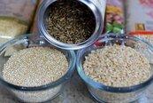 吃糙米較健康?專家說法不同