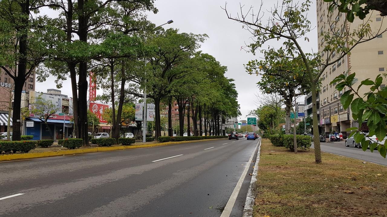 新竹市東大路快車道分隔島(左)將拆除,快車道與混合車道分隔島(右)將加寬,加強植栽營造綠廊景觀大道。 圖/記者黃瑞典攝影