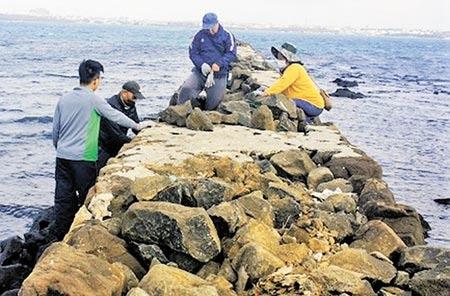 澎湖僅存石砌碼頭「雞母塢」古工法修建,歷史文化再現新風華。(陳可文攝)