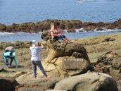 「大媽別坐在海豹上拍照好嗎」 八斗美景保育人士心痛