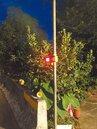 三鶯車禍多 增設太陽能警示燈