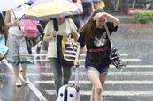 北北基七縣市豪、大雨特報 未來一周東北風影響多雨