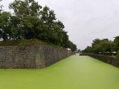 京都四百年古蹟護城河變「抹茶歐蕾」 在地居民驚:從小到大沒見過