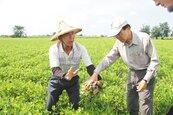 雲林農產災損逾千萬 專案補助